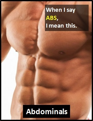 meaning of ABS