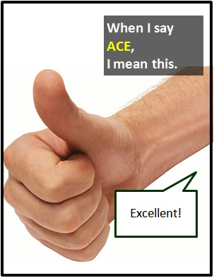 meaning of ACE