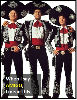 meaning of AMIGO