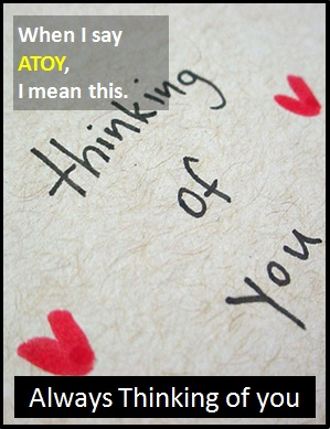 meaning of ATOY