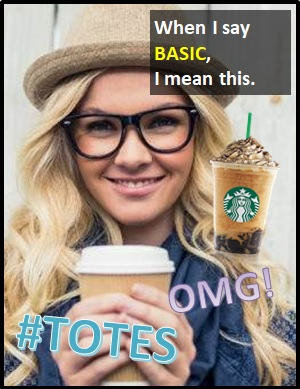 meaning of BASIC