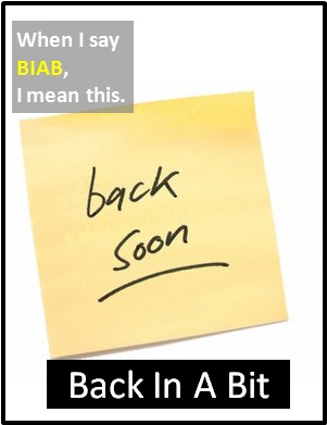meaning of BIAB