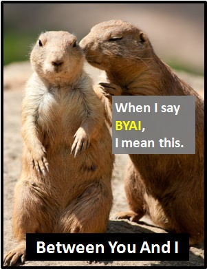 meaning of BYAI