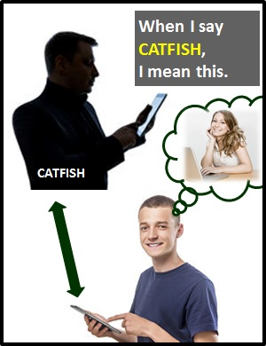 what is catfishing mean