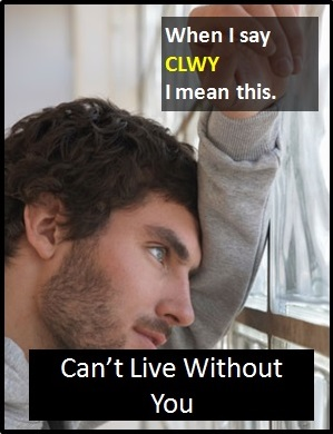 meaning of CLWY