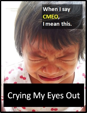 meaning of CMEO