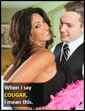 What is the definition of a cougar in hookup