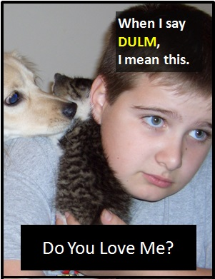 meaning of DULM