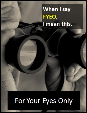 meaning of FYEO