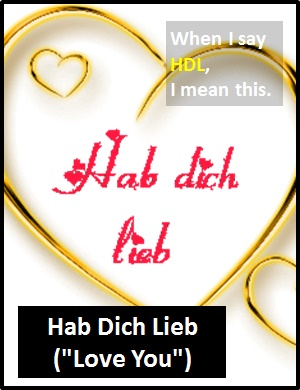 meaning of HDL