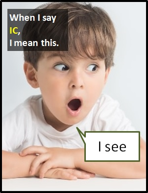 meaning of IC