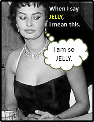 meaning of JELLY