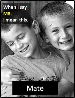 meaning of M8