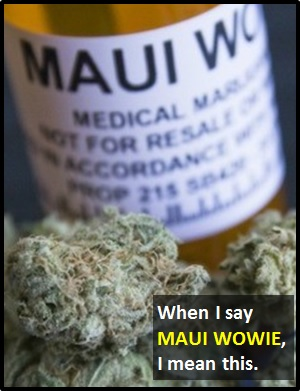 meaning of MAUI WOWIE