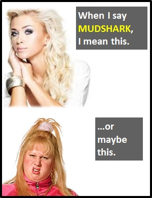 What is a mudshark slang