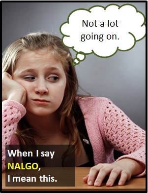 meaning of NALGO