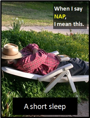 meaning of NAP