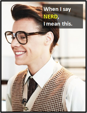 meaning of NERD