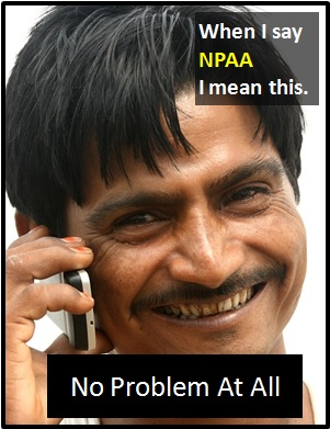 meaning of NPAA