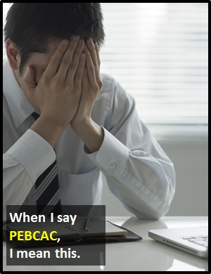 meaning of PEBCAC