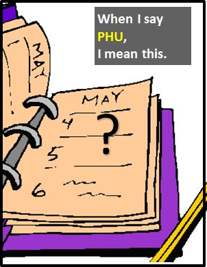 meaning of PHU