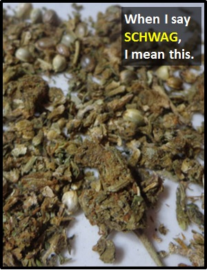 meaning of SCHWAG