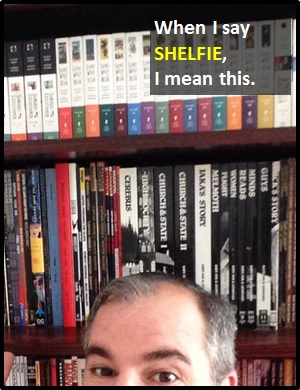 meaning of SHELFIE