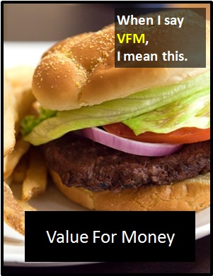 meaning of VFM