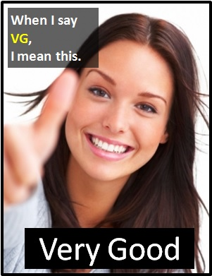 meaning of VG